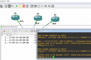 GNS3 Tips: Using the GNS3 hub and switch with Wireshark (Part 2)
