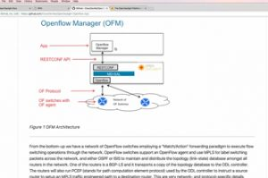 Introduction to SDN and OpenFlow (Free course on GNS3 com