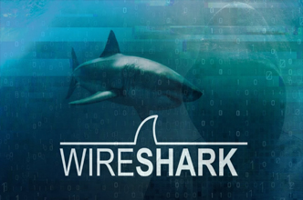 Wireshark,Packet Analysis,Ethical Hacking Course