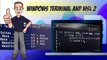 Windows Terminal and WSL 2 tips